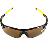 Cycling Explosion proof Wrap Sports Glasses