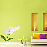 Wall Stickers Wall Decals Style Creative Flower PVC Wall Stickers