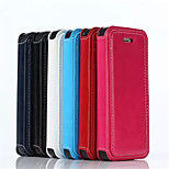 New 2in1 Split fashion Card Holder PU Leather Solid Cover Case for iPhone 5/5S (Assorted Colors)