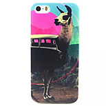 Alpaca Pattern TPU Painted Soft Back Cover for iPhone 5/5S
