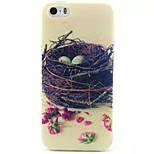 Nest-Muster-TPU gemalt weiche rückseitige Abdeckung für iphone 5/5 s