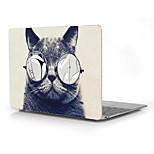 Cool Cat Design 12