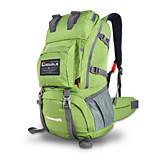 40 L Tourenrucksäcke/Rucksack Camping & Wandern / Klettern Outdoor / Legere Sport Wasserdicht / Regendicht / tragbar / MultifunktionsGrau