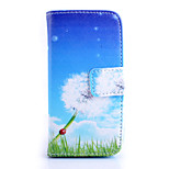 Dandelion Pattern PU Material Card Full Body Case for iPhone 5/5S