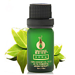 Anti-Inflammation and Oil Control Tea Tree Essential Oil 10ml