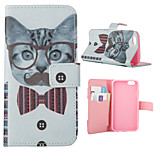 Cat Pattern Card Stand Leather Case for iPhone 6/6S
