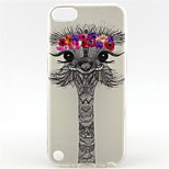 Lovely Ostrich Dreaming Sun Painting Pattern TPU Soft Case for iPod Touch 5/Touch 6