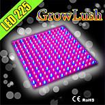 hry® 10w 225LED 700lm 165red + 60blue pannello principale coltiva le luci per l'illuminazione idroponica usa spina (220v)