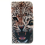 The Fierce Tiger Design PU Leather Full Body Case with Card Slot and Stand TPU Cover for iPod Touch 5