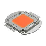 50w volledige spectrum leidde groeien chip 380nm`840nm deksel fabriek al podium voor hydrocultuur kas