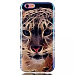 Tiger Pattern Blu-Ray TPU Material Phone Case for iPhone 6 /6S