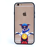 Cycling Glasses Cat TPU and PC Material Combo Phone Case for iPhone 5/ 5S
