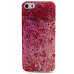 kleine rote Blumen Dusche Muster TPU weichen Abdeckung für iPhone 5 / 5s