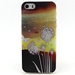 Dandelion Pattern TPU Soft Cover for iPhone 5/5S
