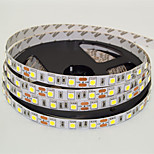JS 5M LED 300*5050 SMD DC12V Warm White / Cool White LED Strip Lamp 72W