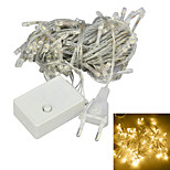 JIAWEN® 10M 4W 100-LED 8-Mode Warm White Light Christmas Decoration String Lights (EU Plug , AC 220V)