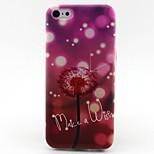Dandelion Dream Pattern TPU Soft Phone Case for iPhone 5C