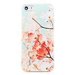 Plum Flower Pattern Transparent PC Back Cover for iPhone 5/5S