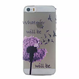 Purple Dandelion Pattern Hard Back Case for iPhone 5/5S