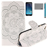 LEXY® Lace Sunflower Pattern PU Full Body Leather Case with Screen Protector and Stylus for iPhone 6/6S Plus