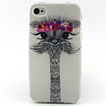 Lovely Ostrich Dreaming Sun Painting Pattern TPU Soft Case for iPhone 4/4S