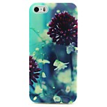Flowers Shower Pattern TPU Soft Cover for iPhone 5/5S