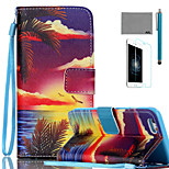 LEXY® Sunrise Palm Pattern PU Full Body Leather Case with Screen Protector and Stylus for iPhone 6/6S