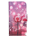 Dandelion Pattern PU Leather Full Body Case with Stand and Card Slot for iPhone 4/4S