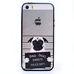 White and Black Dog TPU and PC Material Combo Phone Case for iPhone 5/ 5S