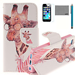 LEXY® Glasses Gentle Deer Pattern PU Full Body Leather Case with Screen Protector and Stylus for iPhone 5C
