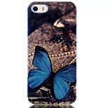 Blue Butterfly Pattern Blu-Ray TPU Material Phone Case for iPhone 5 /5S