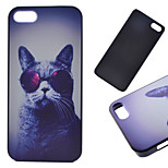 Cat Pattern Hard Back Case for iPhone 5/5S