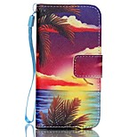 Colorful Pattern PU Material Card Lanyard Case for iPhone 5/5S