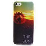 Sunset Dandelion Pattern TPU Case for iPhone 5C