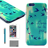LEXY® Sunny Birds Pattern Hard PC Back Case with 9H Glass Screen Protector and Stylus for iPhone 5/5S