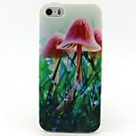 modello di funghi TPU molle per il iphone 5 / 5s