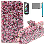 LEXY® Rose Sea Pattern PU Full Body Leather Case with Screen Protector and Stylus for iPhone 6/6S
