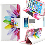 LEXY® Colorful Sunflower Pattern PU Full Body Leather Case with Screen Protector and Stylus for iPhone 5/5S
