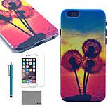 LEXY® Sunset Dandelion Pattern Hard PC Back Case with 9H Glass Screen Protector and Stylus for iPhone 5/5S