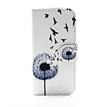 Dandelion Pattern PU Leather Full Body Case with Stand and Card Slot for iPhone 6s Plus 6 Plus 6s 6 SE 5s 5