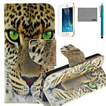 LEXY® Green Eyes Leopard Pattern PU Full Body Leather Case with Screen Protector and Stylus for iPhone 5/5S