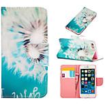 dibujo coloreado o patrón cartera gráfico casos con casos soporte cuerpo completo para iphone 6s más / iphone 6 más