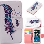 speciale disegno disegno colorato o il modello di portafoglio grafico casi con casi supporto completo del corpo per il iphone 6 / 6s