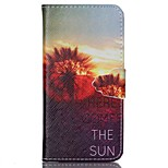 Dandelion Painted PU Phone Case for iphone6/6S