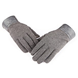 AOTU Thick Winter Warm Winter Non Inverted Velvet IpadIphone Mobile Phone Can Touch The Gloves AT8802