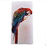 Color the Parrot Pattern Transparent TPU Soft Case for Sony Xperia Z5 Compact