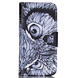 Eagle Pattern PU Leather Phone Case For iPhone 5 / 5S