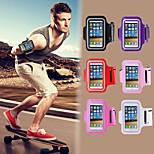 wasserdichtes Sport laufen Arm-Band-Handy Armhalter pounch Bandgürtel Fall für iphone 5 / 5s / 5c (verschiedene Farben)