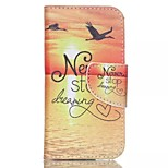 Sunrise Painted PU Phone Case for ipod touch5/6