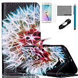 COCO FUN® Rainbow Dandelion Pattern PU Leather Case with V8 USB Cable, Flim, Stylus and Stand for Samsung Galaxy S6 edge